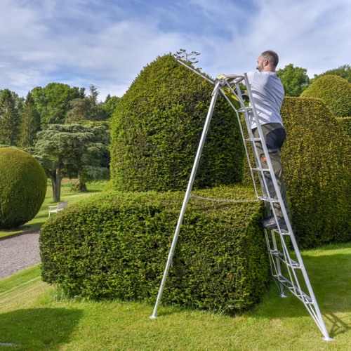 8 Tread Standard Tripod Ladder