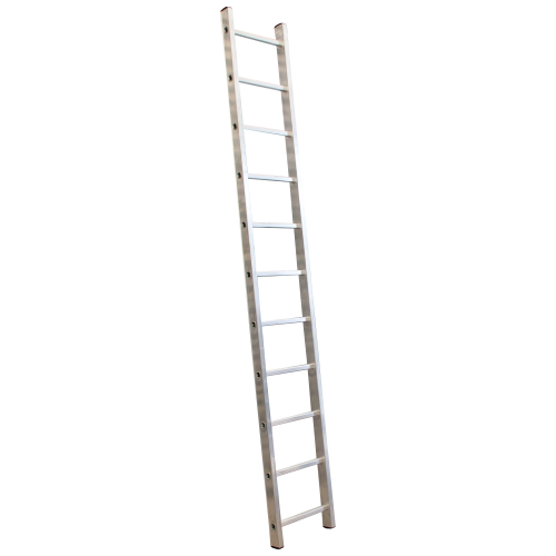 11 rung (2.95m) Single Professional Ladder