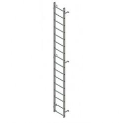 Ladder Only