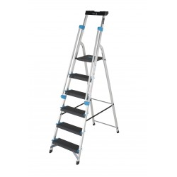 6 Tread Professional Platform Step with Handrails