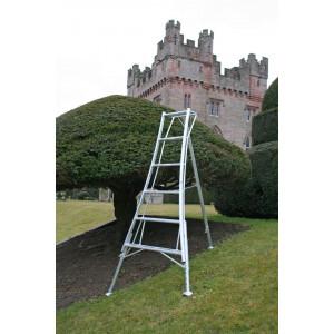 10 Tread Adjustable Tripod Ladder