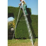10 Tread Standard Tripod Ladder